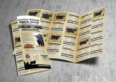 Sale Catalog Mailer